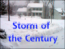 Storm of the Century.JPG (33083 bytes)